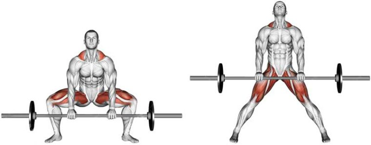 Can sumo deadlifts replace the squat? 1